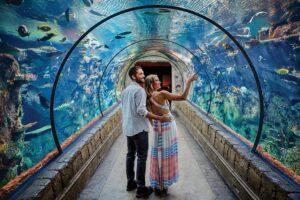 Shark Reef at Mandalay Bay Hotel and Casino - Honeymoon Destinations in Las Vegas