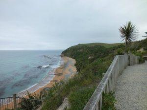 Bushy Beach - Things to do in Oamaru, New Zealand