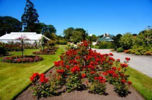 Public gardens - Things to do in Oamaru, New Zealand