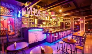The Velveteen Rabbit - Best Bars and Pubs in Chennai