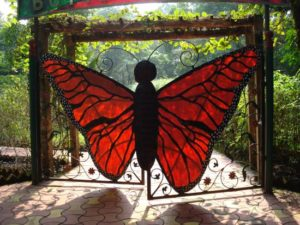 Butterfly Conservatory in goa - fun things to do in Goa