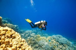 Scuba Diving at Grande Island in Goa - fun things to do in Goa