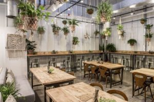 Wild and the Moon - Best Vegetarian Restaurants in Dubai