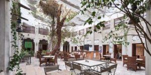 XVA Cafe - Best Vegetarian Restaurants in Dubai