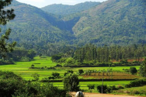 Kolli Hills - Weekend Getaways From Chennai