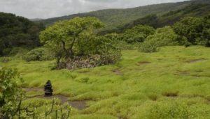 Sanjay Gandhi National Park - Places to Visit in Mumbai