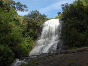 Bear Shola Falls - Best Waterfalls Near Chennai