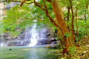 Mallela Theertham - Best Waterfalls Near Chennai