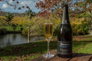 City Tour and Kumeu Wine Country - Tourist places in auckland