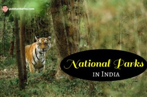 Best National Parks in India