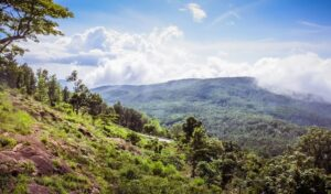 Yercaud - Weekend Places in Chennai