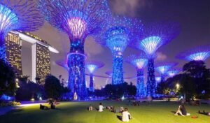 Gardens By The Bay - Best Places to Visit in Singapore