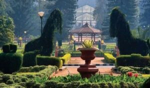 Guided Electric tour in Lalbagh-Exciting Things To Do in Bangalore