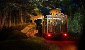 Singapore Night Safari - Best Places to Visit in Singapore