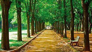 Cubbon Park - Best Places to Visit in Bangalore