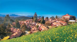 Hotel Lakeview Ooty - Haunted places in Ooty