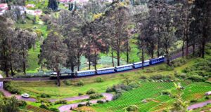 How to Travel to Ooty in The New Normal