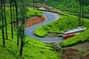 How to reach Munnar - Things to do in Munnar