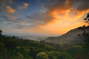 Pothamedu Viewpoint - Things to do in Munnar