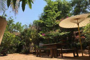 Baan Nimbus at Sakleshpur - Best Offbeat Places Near Bangalore