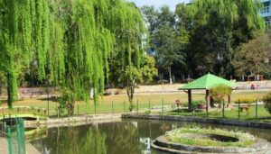 Botanical Garden - Best places to visit in Shillong