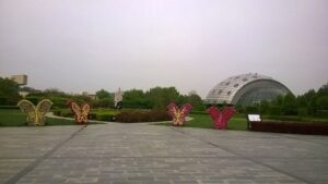Butterfly Museum - Best places to visit in Shillong